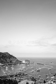 Avalon Harbor Catalina Island Black and White Photo