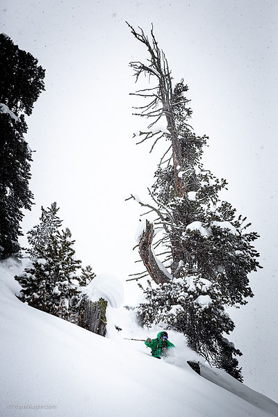 _MG_5682-arnaud_rougier__freeride__verbier