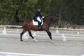 SI_Festival_of_Dressage_300115_Level_9_SICF_0473