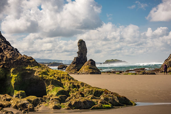 Oregon_Coast-43