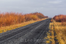 Foggy Autum Morning along Central Patrol Road in Malheur National Wildlife Refuge
