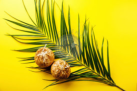 Coconut Water in natural coconut healthy drink on green leaf of tropical palm tree on yellow background