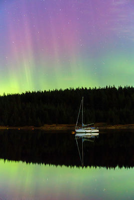 Kielder Northern Lights