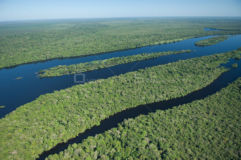 "Aerial view of ""Várzea"" flooded Amazon Rainforest on the banks of the Guaporé / Itenez River, Western Rondônia State and Eastern Beni Department, border of Brazil and Bolivia."