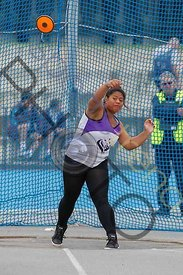 discus photos