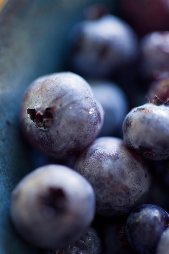 Acutting_blueberries_6352