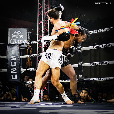 Thai Fight 2017: PHOTO DU JOUR 219 photos