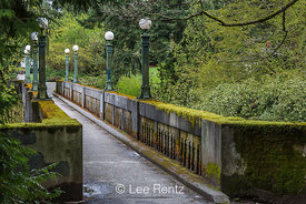 Wilcox Footbridge in Seattle's Washington Park Arboretum