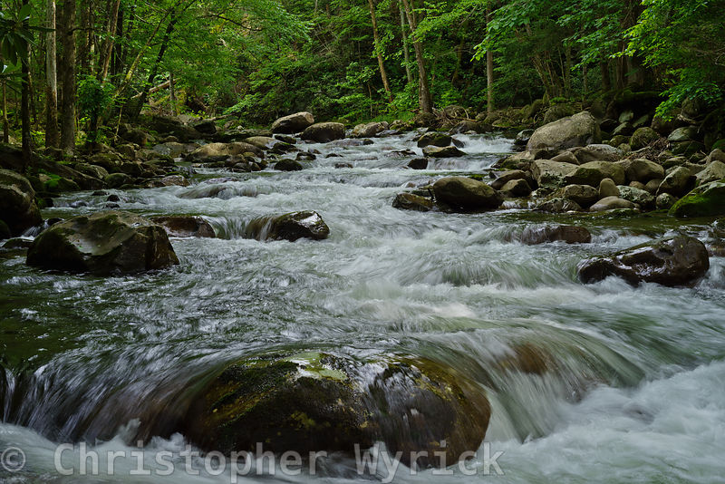 This photo of Porter's Creek which I captured from the middle of the stream is one of my favorite river shots.  It gives the feeling of being washed over by the cool, clean mountain water.  A stunning image for a large print.