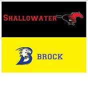 Shallowater v Brock photos
