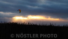 Kite surfing of the coast of Amager.