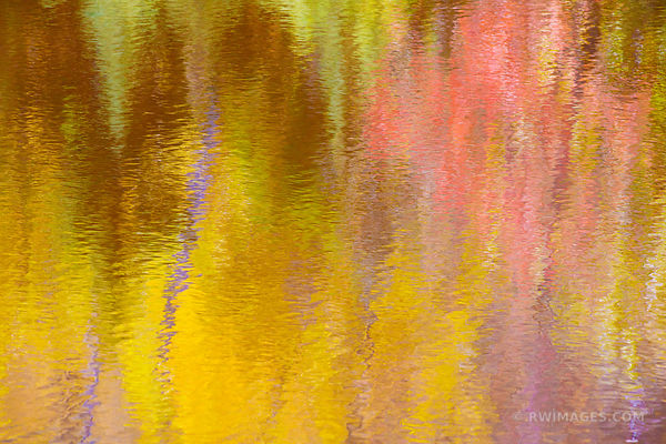 AUTUMN FOREST WATER REFLECTIONS ADIRONDACK MOUNTAINS FALL COLORS NATURE ABSTRACT