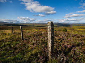 Scotland_Highlands_Aug_2014_132