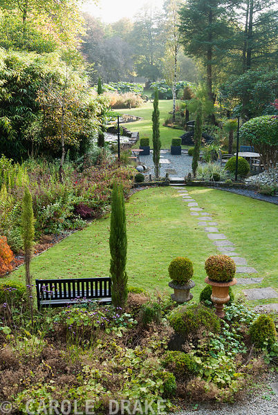Garden made in a boggy valley amongst mature trees features pencil cypresses, Cupressus sempervirens, acers, shaped rhododendrons and large stands of Gunnera manicata. The Cors, Laugharne, Camarthenshire, Wales, UK