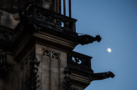 The gargoyles of St.Vitus