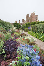 Eryngium, Heuchera, Astilbes etc in summer border; castle