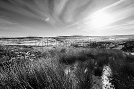 Remote moorland of Edmondbyers Common in winter. Black and white with added film grain