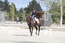 SI_Festival_of_Dressage_310115_Level_4_Champ_0582