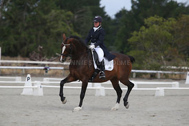 SI_Festival_of_Dressage_300115_Level_9_SICF_0484