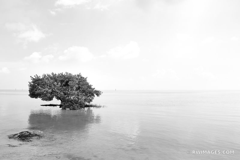 Key West & Florida Keys - Black and White Photos Images Fine Art Prints Stock Photos Color & Black and White Pictures Framed Canvas Metal Acrylic Prints Interior Designer Art Consultant Large Wall Decor Art Source