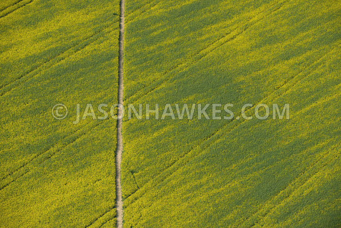 Aerial view of field in Buckinghamshire