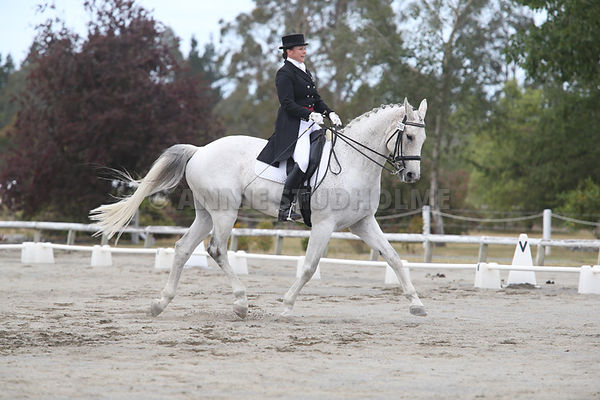 Canterbury Dressage Champs 2014 photos