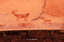 Ancient Anasazi Rock Art Etchings in Utah