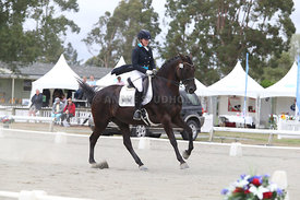 SI_Festival_of_Dressage_310115_Level_6_7_MFS_0651