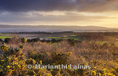 Dee Estuary from Thursaston (2)