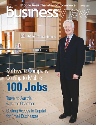 Business_View_Cover_March_2014
