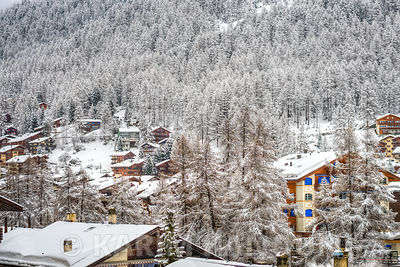 Forest and chalet in a snowy mountain - Zermatt