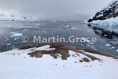 Andvord Bay, Antarctic Peninsula Mainland with polar cruise vessel Akademik Ioffe, ecotourists and Gentoo Penguin colony
