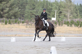 SI_Festival_of_Dressage_310115_Level_1_Champ_0692