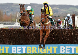 13:25 - The BetBright Dipper Novices' Steeple Chase photos