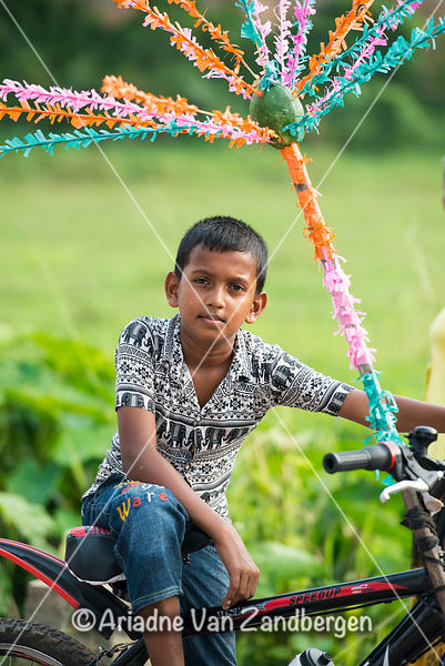 Boy riding decorated bike in procession, Il Full moon Poya festival, Weligama, Sri Lanka