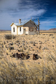 An old abandoned house in the desert, dead tree next to it, some rusted tin cans in the sparse grass in the foreground.