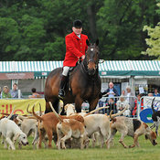 Rutland County Show photos