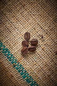 Roasted coffee beans in detail.