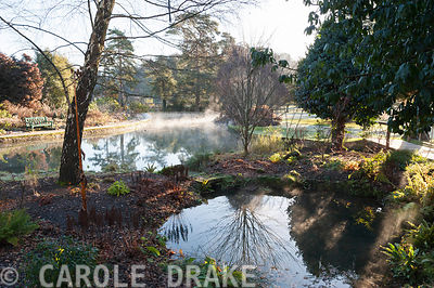 Mist rises from water in the Wells Garden at the Bishop's Palace in Well on a November morning