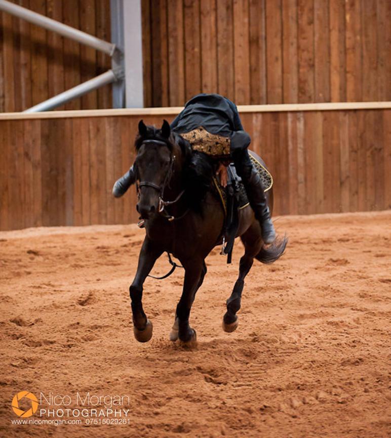 Image Rockin 39 Horse Stunt Riders Photography By Nico