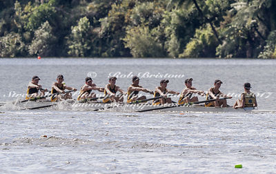 Taken during the NZSSRC - Maadi Cup 2017, Lake Karapiro, Cambridge, New Zealand; ©  Rob Bristow; Frame 1522 - Taken on: Friday - 31/03/2017-  at 15:50.02