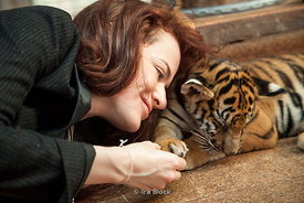 A tourist playing with a baby tiger at Tiger Temple in Kanchanaburi, Thailand.