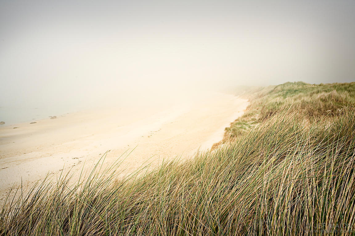 Sand beach and ocean fog