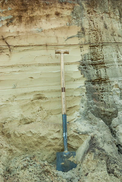 Spade and cleaned up soil profile in the shore of river Dinkel