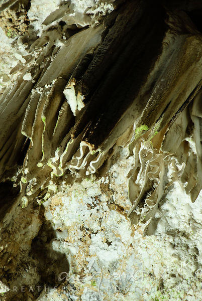 Sterkfontein Caves: detail of furled stalictites