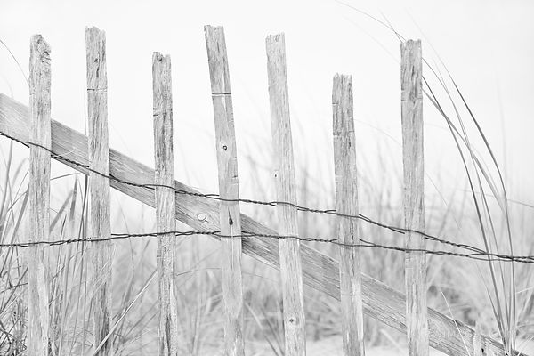 OLD WOODEN FENCE RACE POINT BEACH CAPE COD PROVINCETOWN MA BLACK AND WHITE