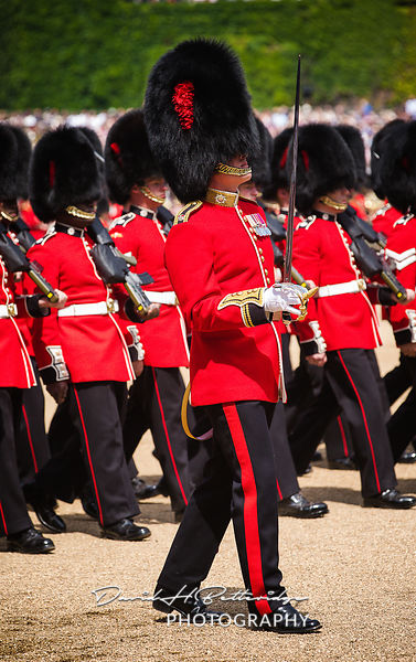 Trooping_the_Colour_8777