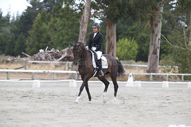 SI_Festival_of_Dressage_300115_Level_3_NCF_0106