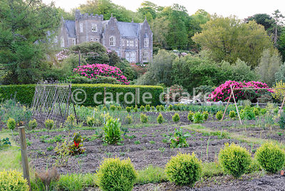 View from the kitchen garden, now used as allotments for local people back to the house, built in the Victorian Gothic style in 1862 as a hunting lodge. Lukesland, Harford, Ivybridge, Devon, UK