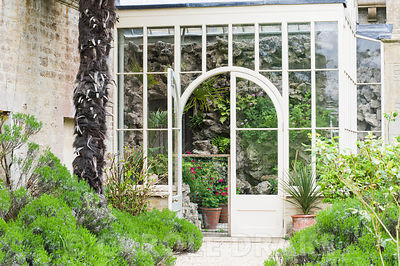 Victorian conservatory containing a tufa wall, recently restored, planted with ferns, and bright pelargoniums against the windows. Rousham House, Bicester, Oxon, UK